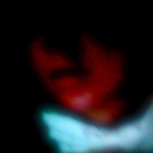 Profile picture for Meredith Markovich