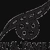 Comfort & Fame