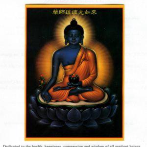 Profile picture for Vipashina