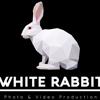 White Rabbit Production