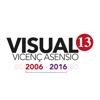 Visual13