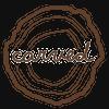 Carved.com