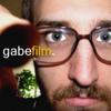 Dick Gabriels