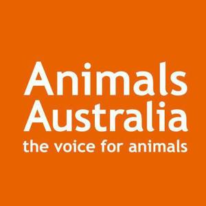 Profile picture for Animals Australia