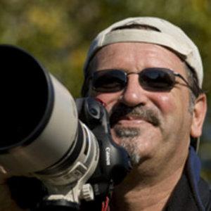 Profile picture for Michael Luppino