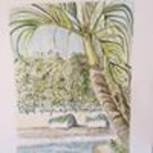 Erica Elliott West Palm Beach