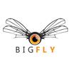 BigFly.fr