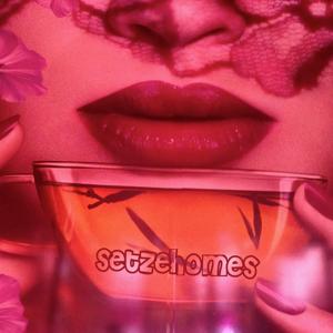 Profile picture for setzehomes