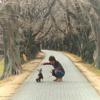 Daichi Michimuko