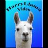 Harry Llama