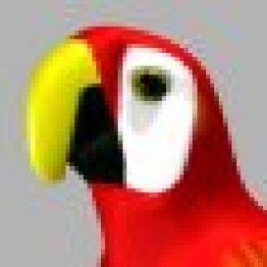 Profile picture for kiopaa