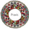 PRAXIS Educación Audiovisual