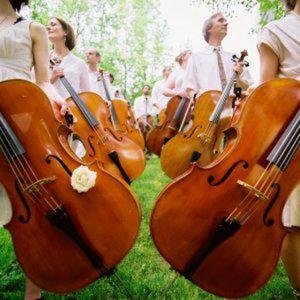 Profile picture for Portland Cello Documentary Proje