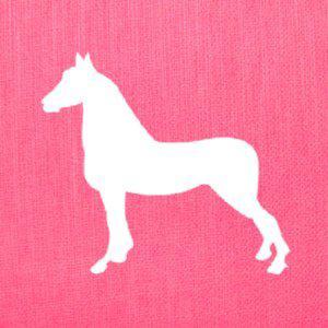 Profile picture for Actionhorse Films