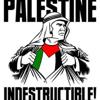 Kevlic Palestine