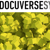 Docuverse Group