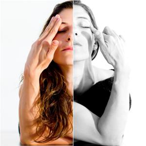 Profile picture for Anita Brandolini