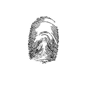 Profile picture for Calvacreation