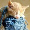 Felicitas Nest