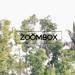 Zoombox Wedding Videos