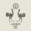 Ancient Eye Media