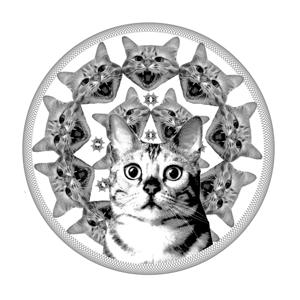 Profile picture for ovgu akgurgen