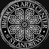 Brooklyn Arts Center