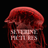 Severine Pictures