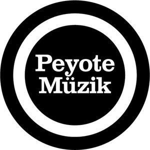 Profile picture for Peyote Müzik