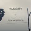 Shahar Haziza
