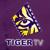 Tiger Television