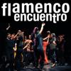 flamenco encuentro