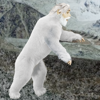 Abominable Pictures