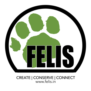 Profile picture for Felis Creations