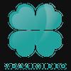 yda4i video