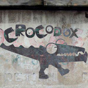 Profile picture for Crocodox