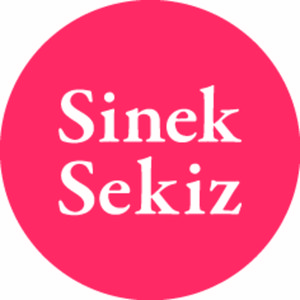 Profile picture for sineksekiz