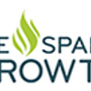 We Spark Growth