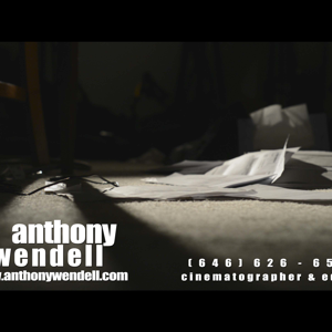 Profile picture for anthony wendell