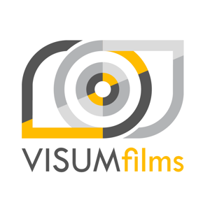 Profile picture for VISUM films