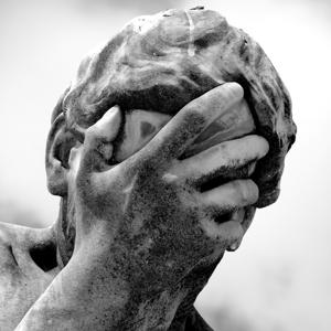 Profile picture for Sean Leonard