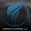 Mesohunters