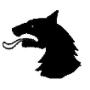 Profile picture for Christian Wolf