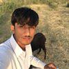Malik Aamir Sohail