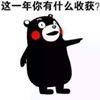 Yujiang Bi