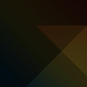 Profile picture for Primary Color