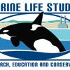 Marine Life Studies