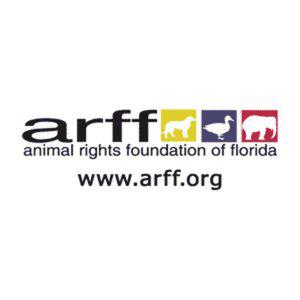 Profile picture for ARFF