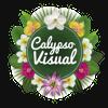 Calypso Visual