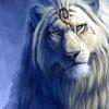 LionHot